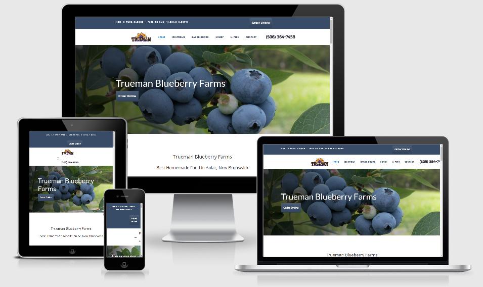 trueman blueberry farm